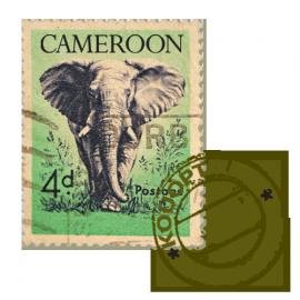 Cameroon - Kouoptamo