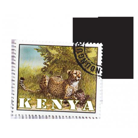 Kenya - Nyeri