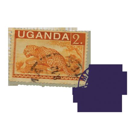 Uganda- Mt Elgon