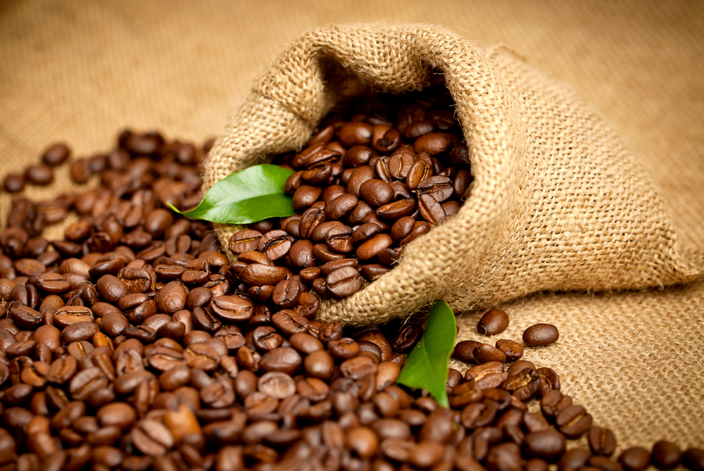 Coffee Brewing Guidelines